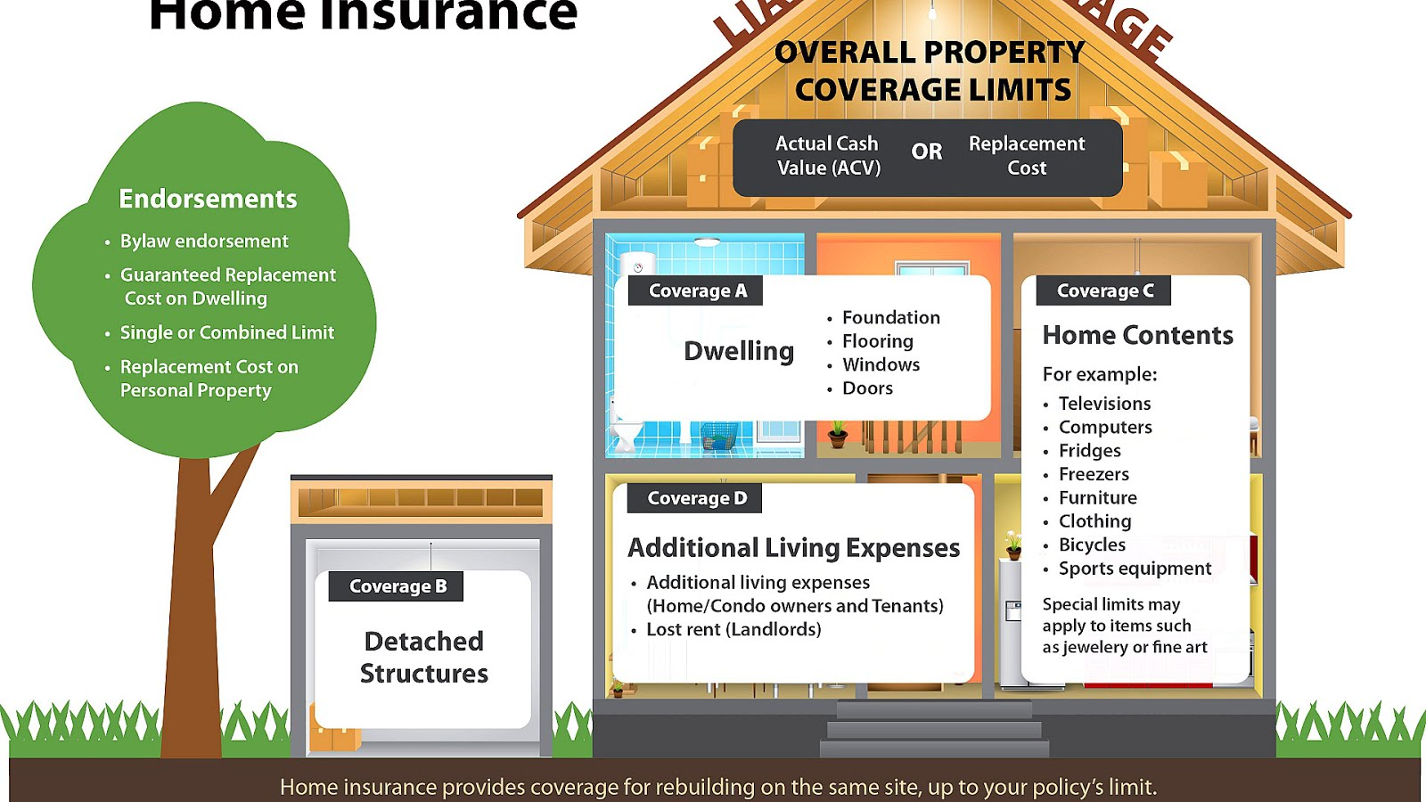 Can Floridian buy basic home insurance coverage